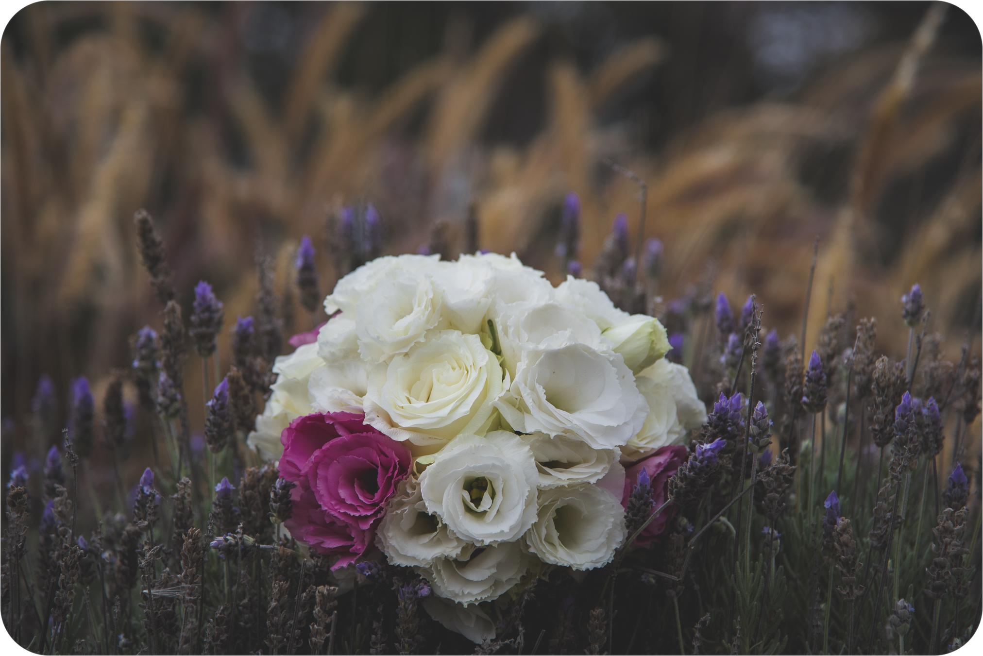 Fotógrafo de bodas Rosario