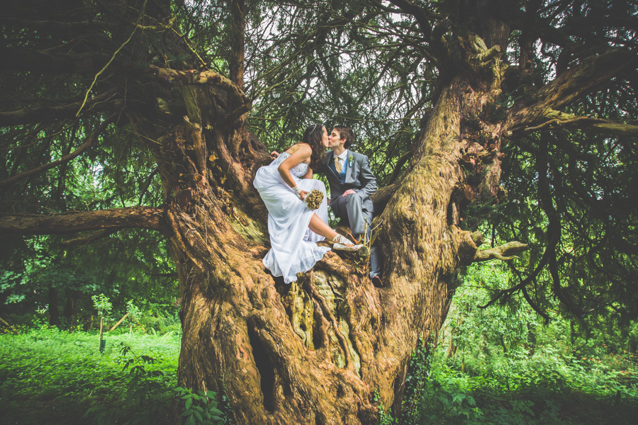 The happily just married couple have a kiss in a beautiful welsh tree in Brecon