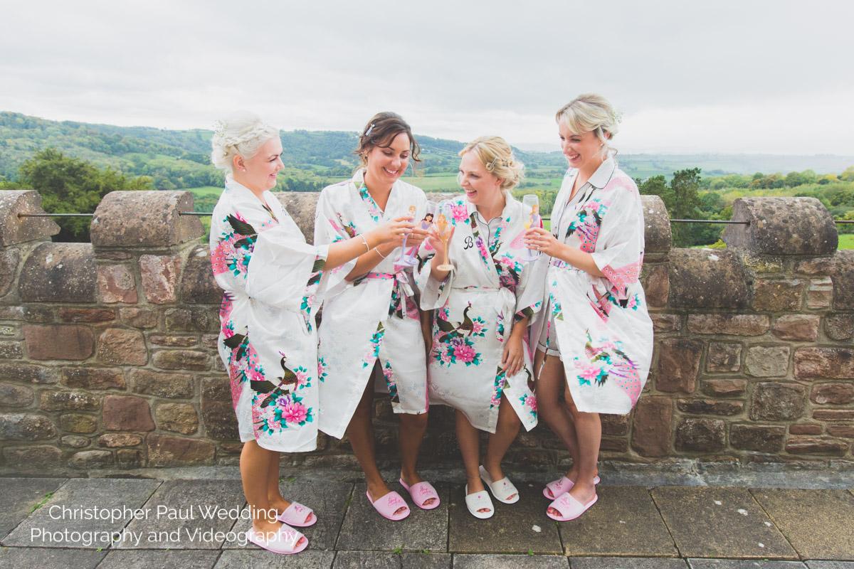Caer Llan Wedding Photos