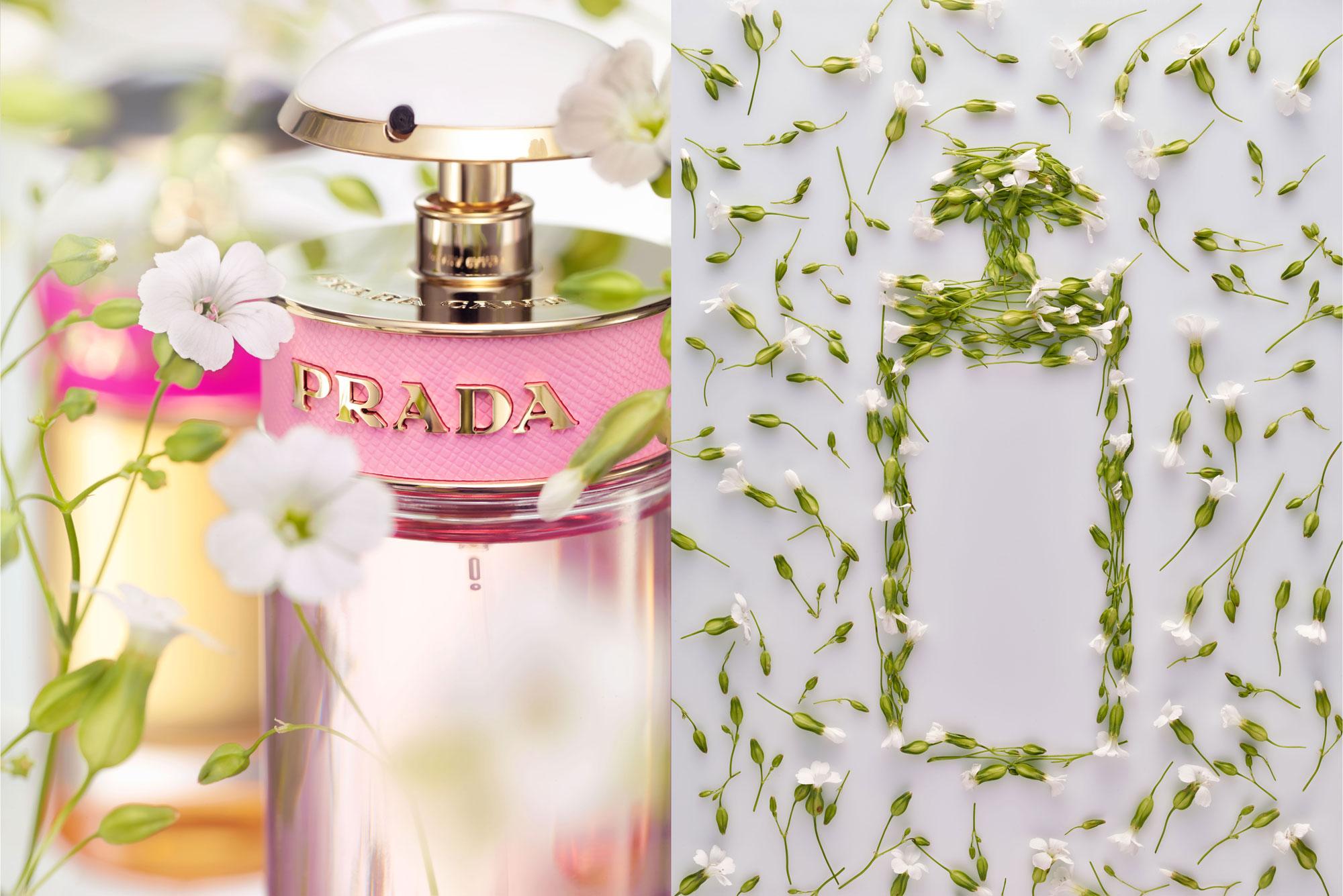 061016_flower_perfume_prada123464.jpg