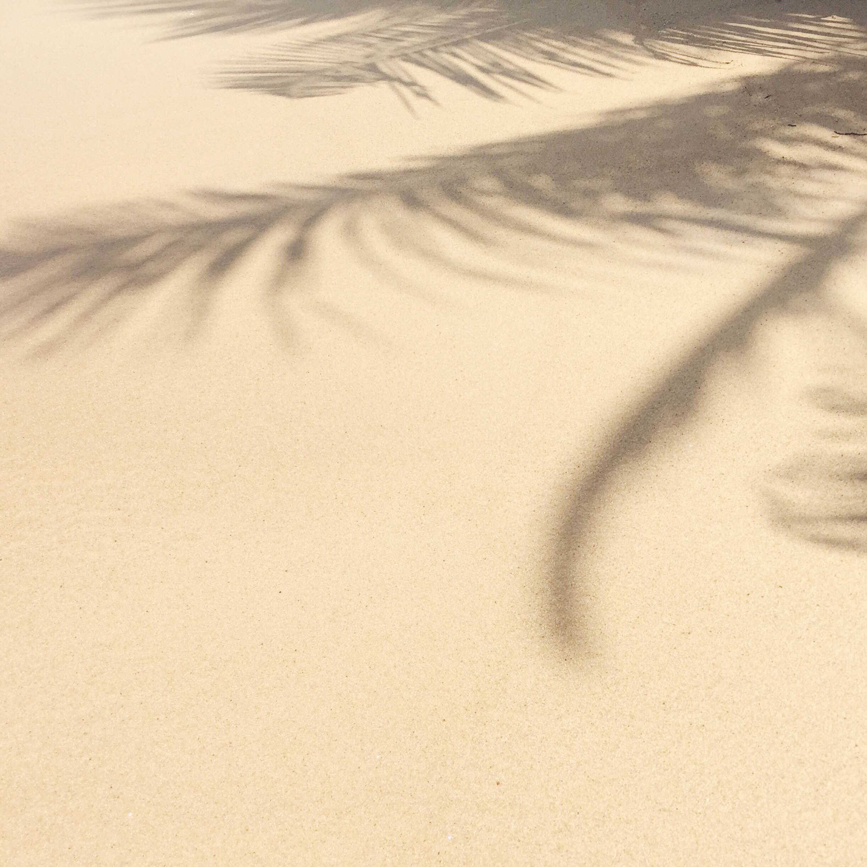 Willy Lamers.  www.willylamers.nl  I  Photographer I Sri Lanka photo series for  folc eyewear.