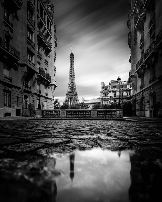 This is happens when mimo find the little puddle ;) #superstarz_bnw #bnw_planet_2019 #gitzoinspires #sombrebw #bnw_captures #pr0ject_bnw #flair_bw #bw_perfect #louvre #ig_photostars_bw #ic_bw & #bnw_creatives #excellent_bnw #bnw_greatshots #my_daily_bnw #bnw_legit #top_bnw #ig_paris #haidafilters #bnw_just #bnw_drama #bnw_madrid #bnw_mystery #bnw_rose #amateurs_bnw #awesomebnw #world_bnw #bnwmood #gf_france