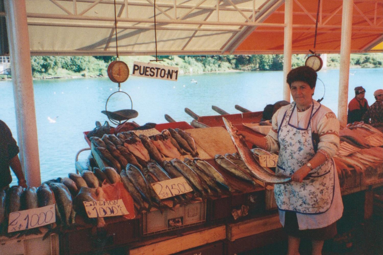 Pic: Fine wares at Valdivia fish markets