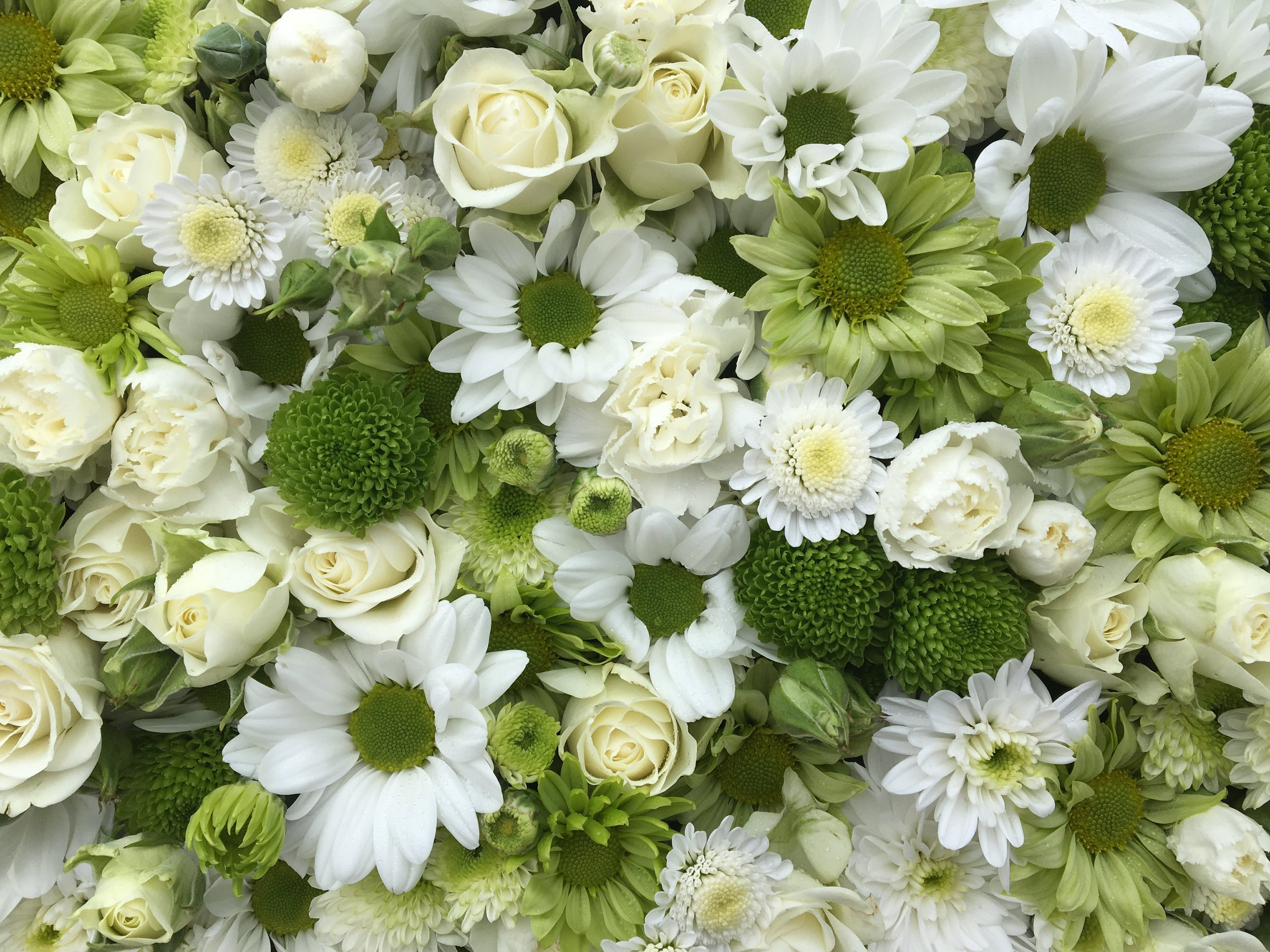Delicious creamy white spray roses with white spray carnations and a range of chrysanthemums from little green button types to single greens and white to double whites from really tiny to big flowers. A fresh crisp colour scheme that I always think feels right as a memorial but especially appropriate for Diana.