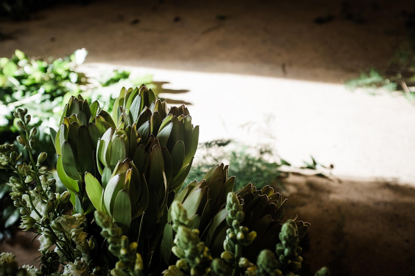 Alex-Sedgmond-Photography-Cardiff-Wales-Forbesfield-Florist-Cardiff-Rosedew-Farm-Flower-School-FFS-39.JPG