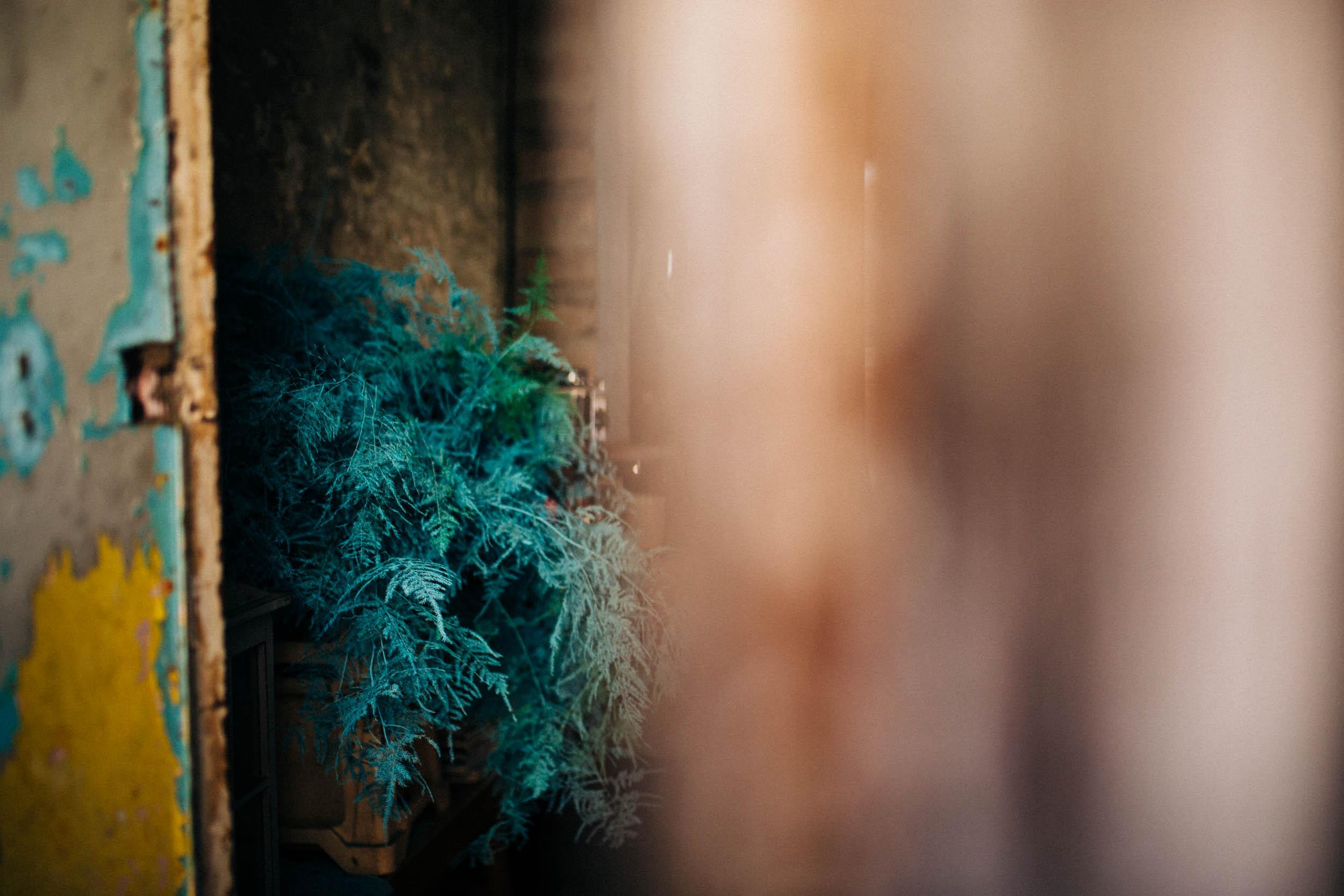 Alex_Sedgmond_Photography-Forbesfield-Cardiff_SouthWales-21.jpg
