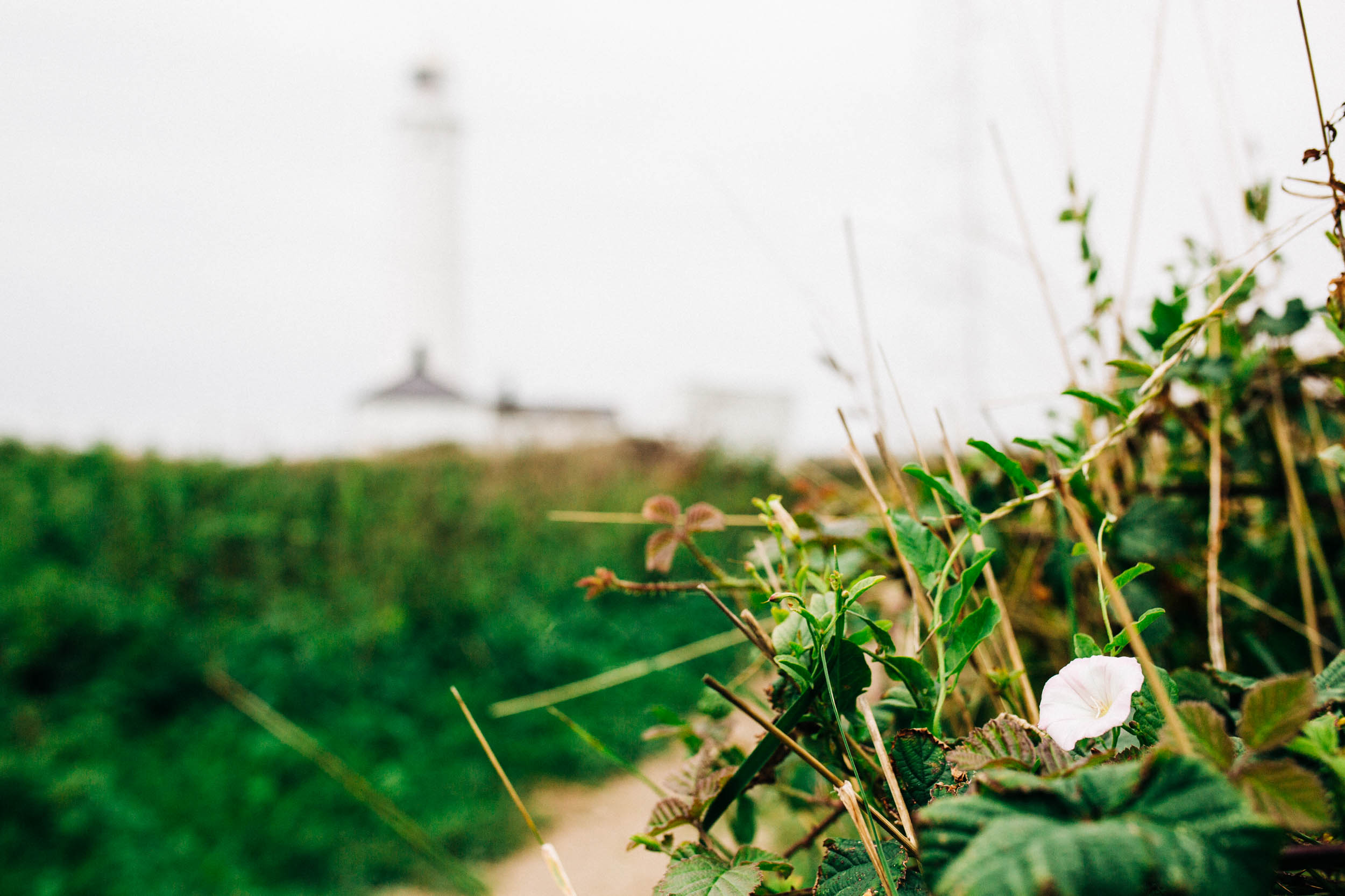 Alex_Sedgmond_Photography-MonkNashLighthouse-WeddingPhotography-Penny&Mike-6.jpg