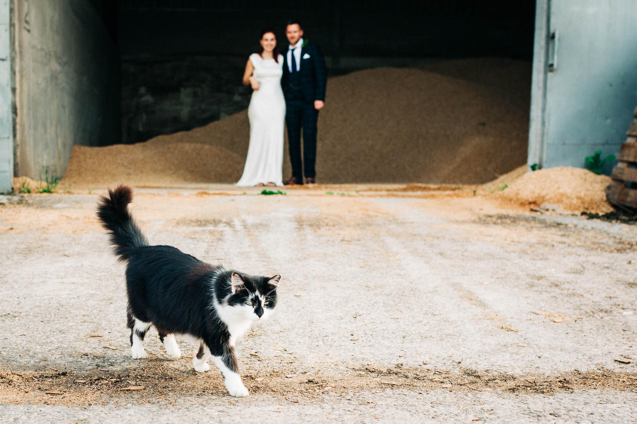 Alex_Sedgmond_Photography-SouthWalesWeddingPhotography-Wedding-Photographer-Cardiff-151.jpg
