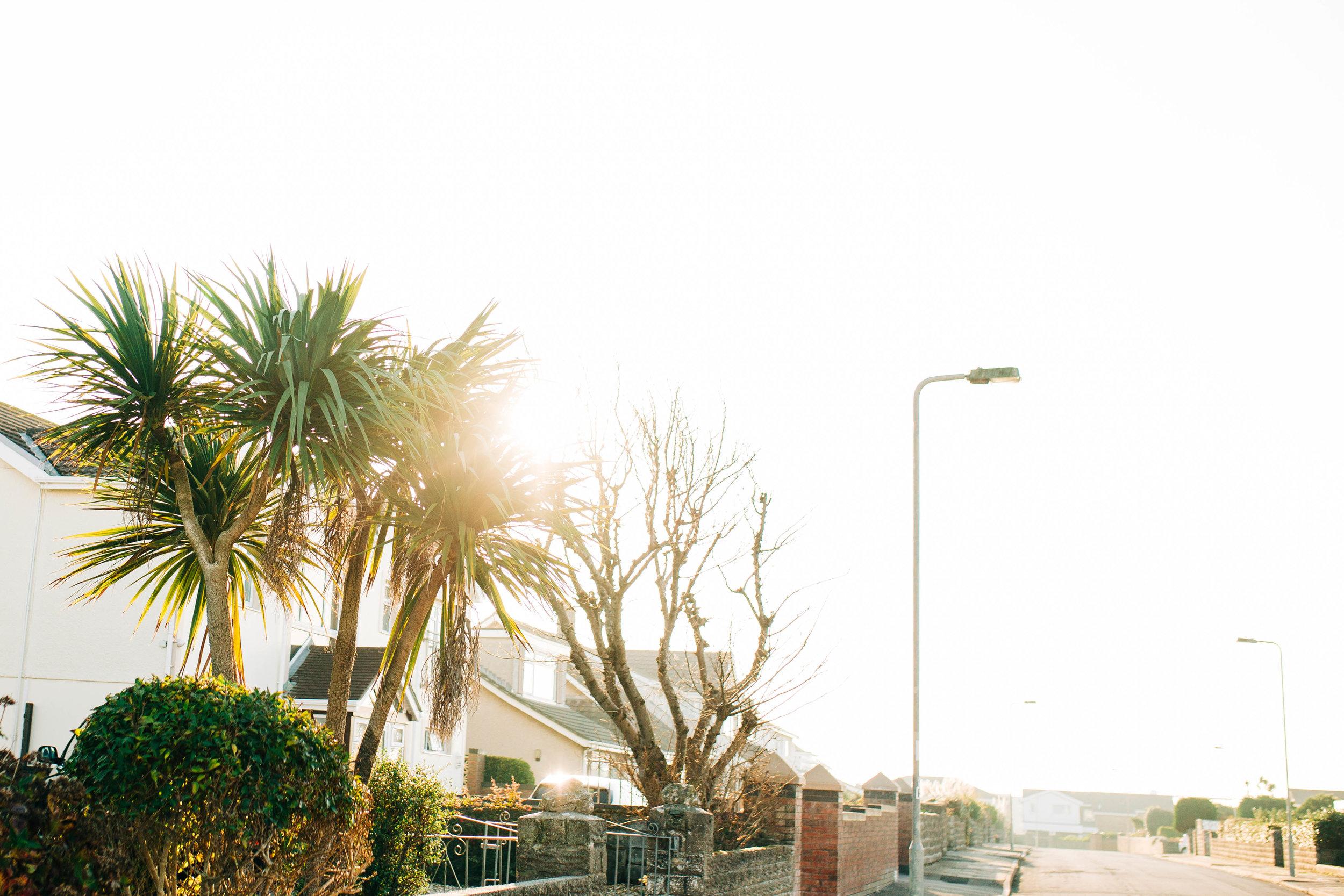 Alex_Sedgmond_Photography-Cardiff-SouthWales-PorthcawlRestbay-Surfing-EzraHames-12.jpg