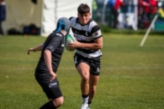 Wales Rugby.jpg