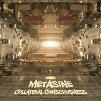 Collateral Consciousness   Metasine