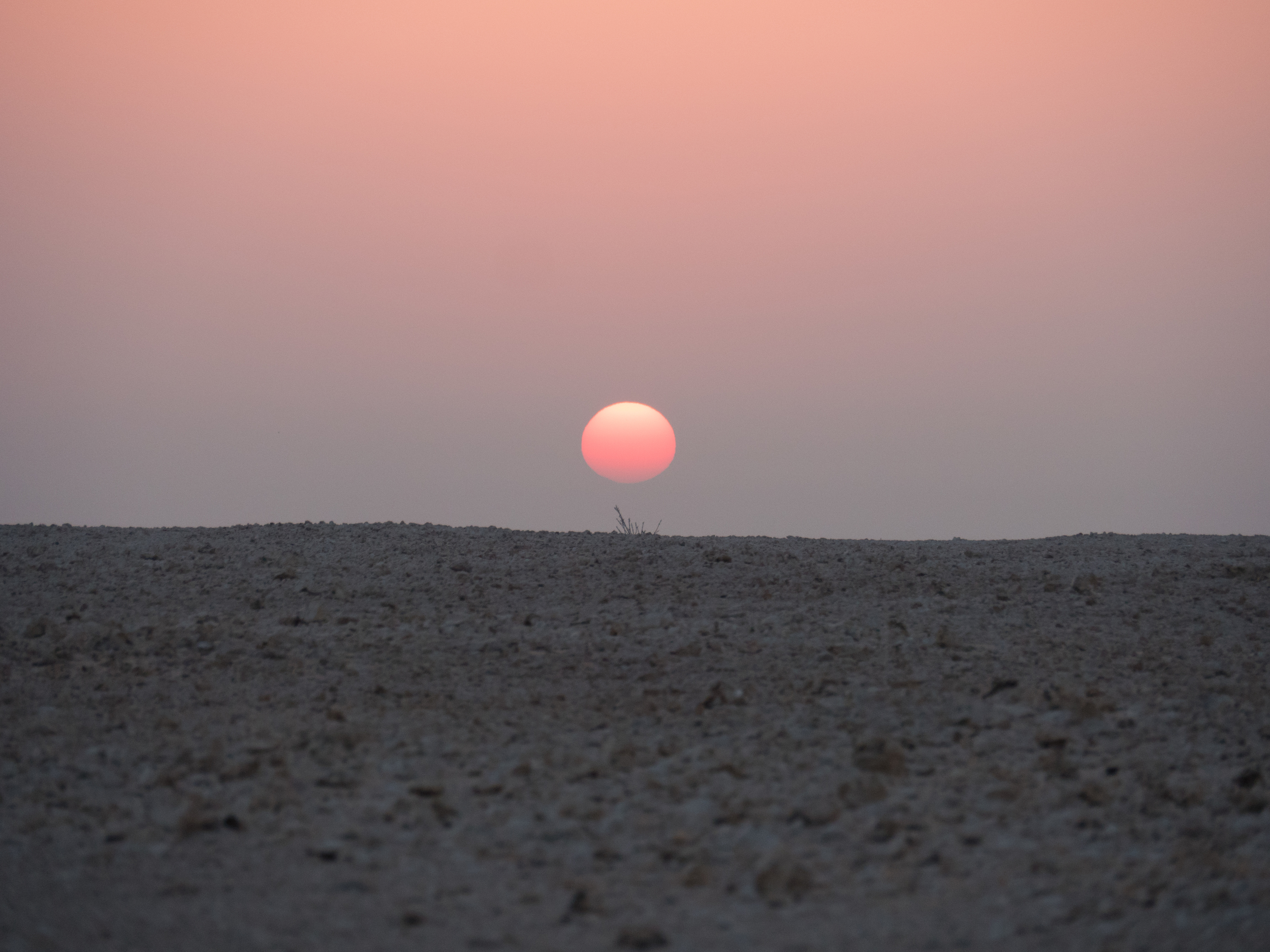 Photo credit mine. Sunrise, desert sunrise, unflitered, near Shahania, Qatar