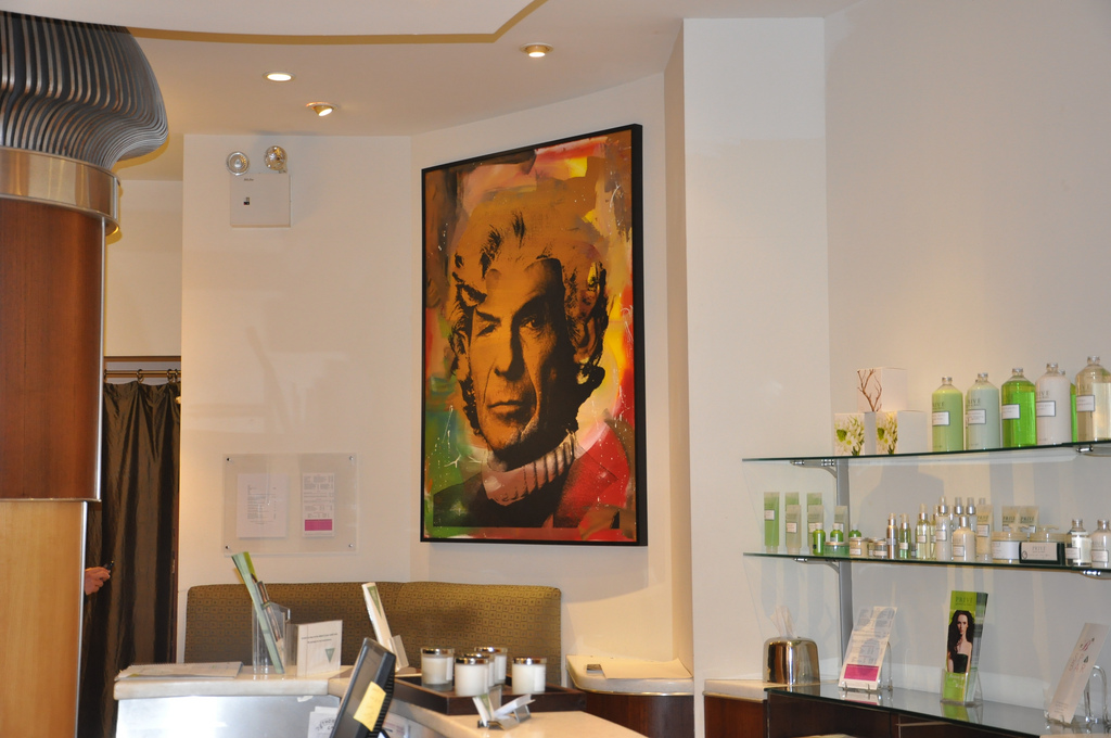 Prive Salon, SoHo, back in the day when it was open. My photo. Loved this Spock Warhol piece to bits.