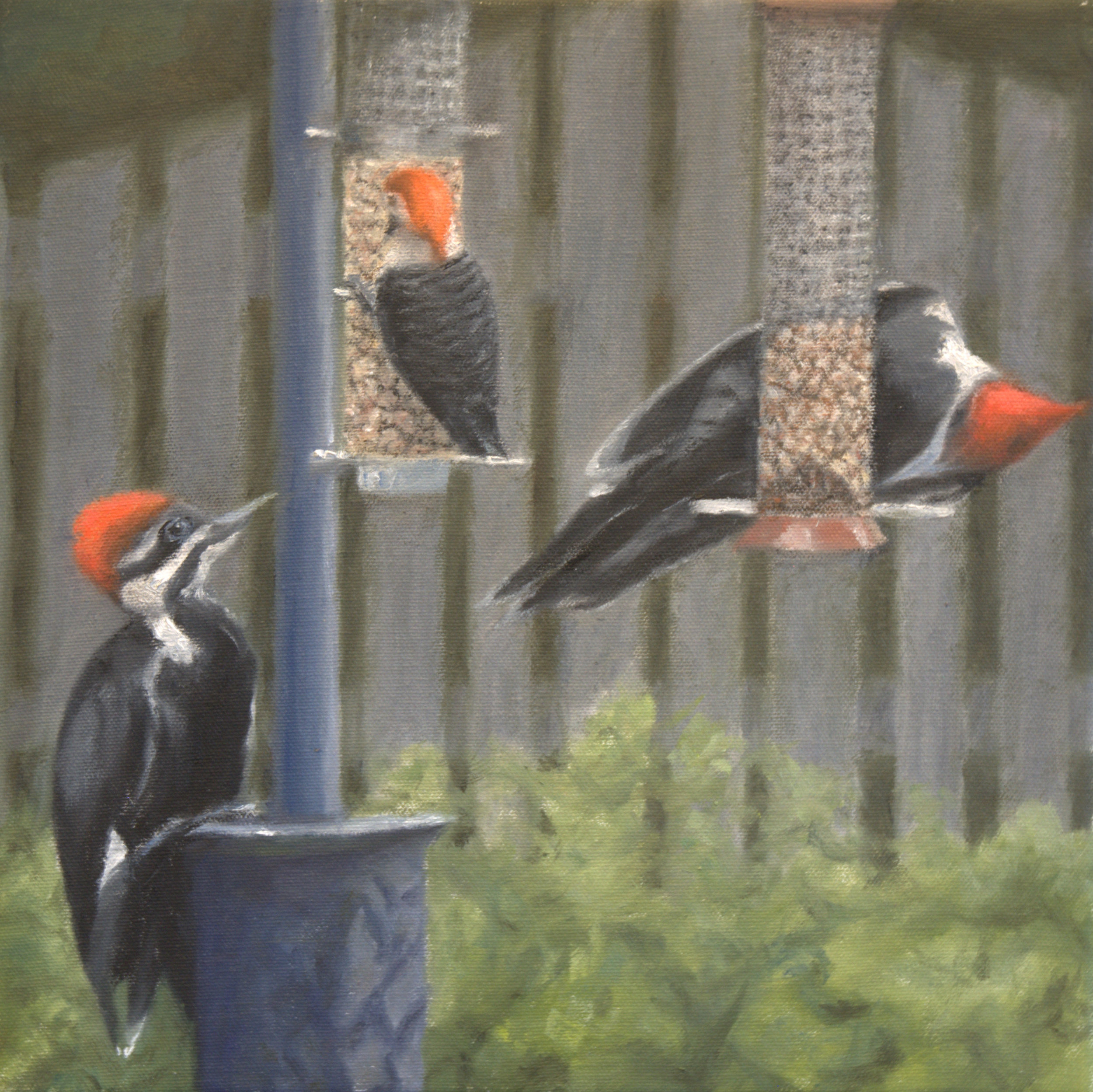 Woodpecker convention