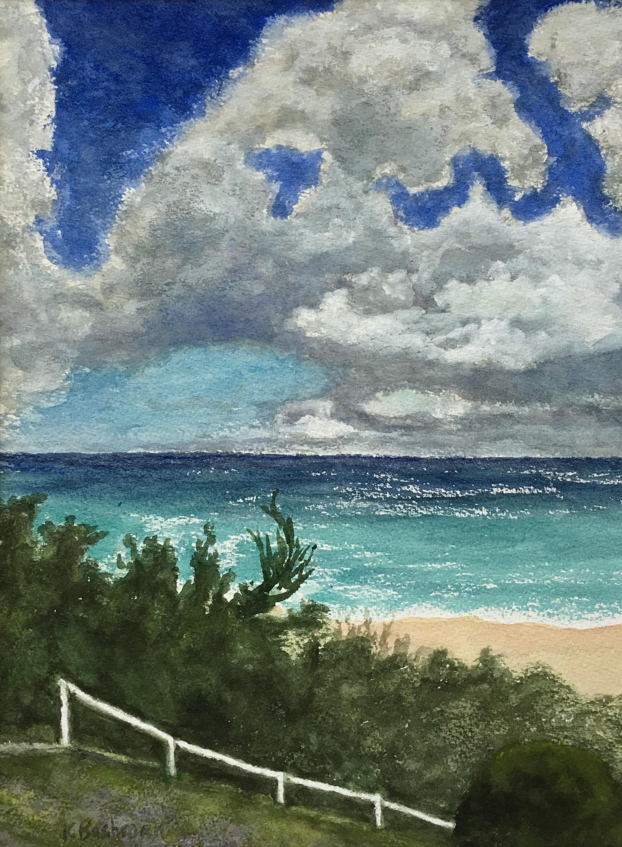 Bermuda Beach Path