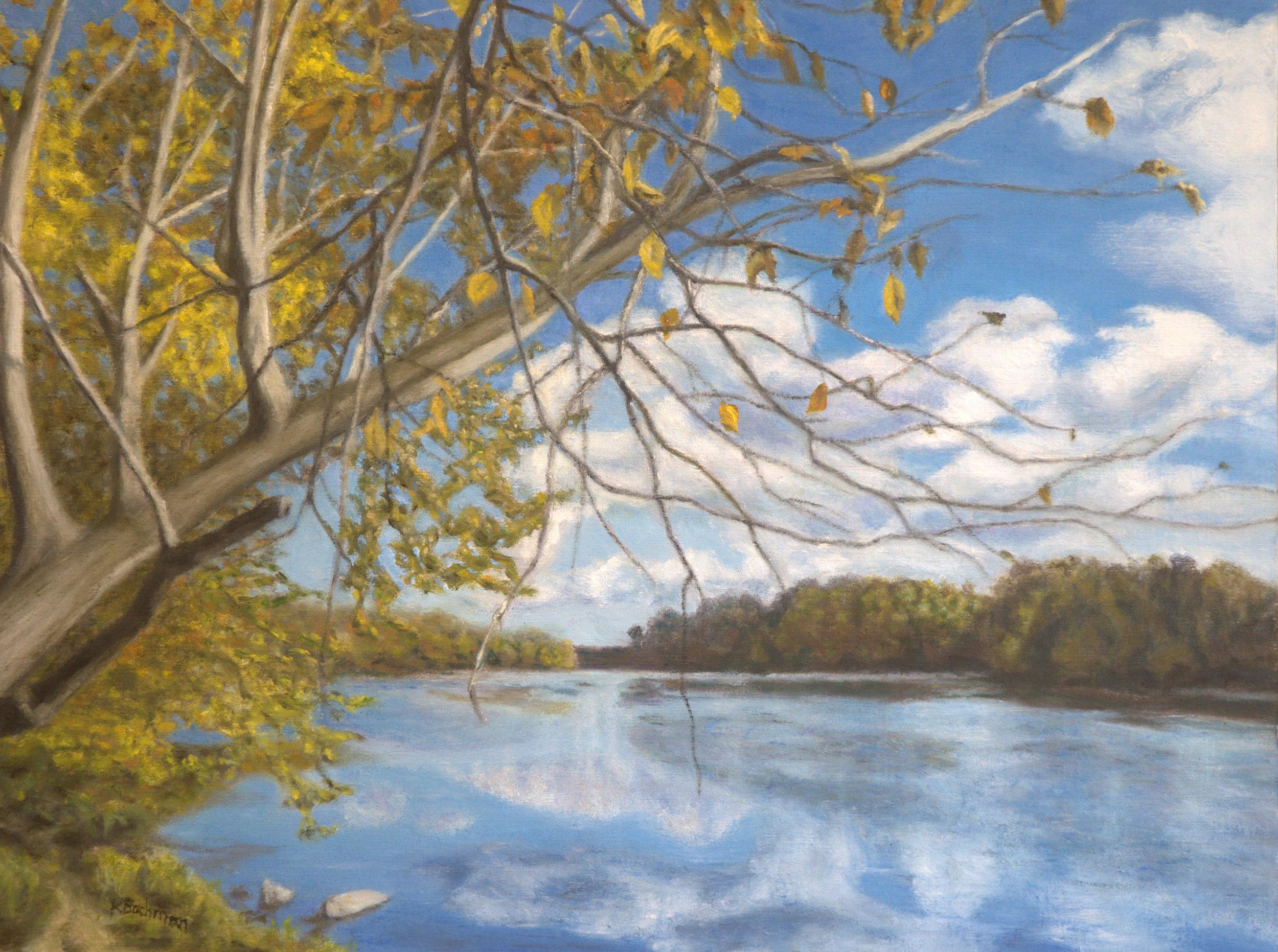 Potomac Autumn