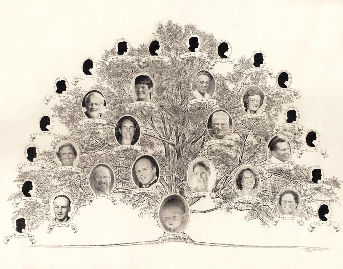"""Sheldon Family Tree, pencil, 14"""" x 17"""" - by Bly Pope"""