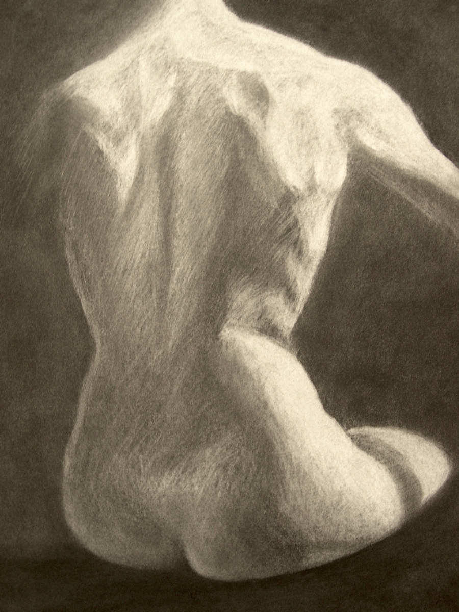 "Female Back, charcoal, 24"" x 18"" - by Bly Pope"