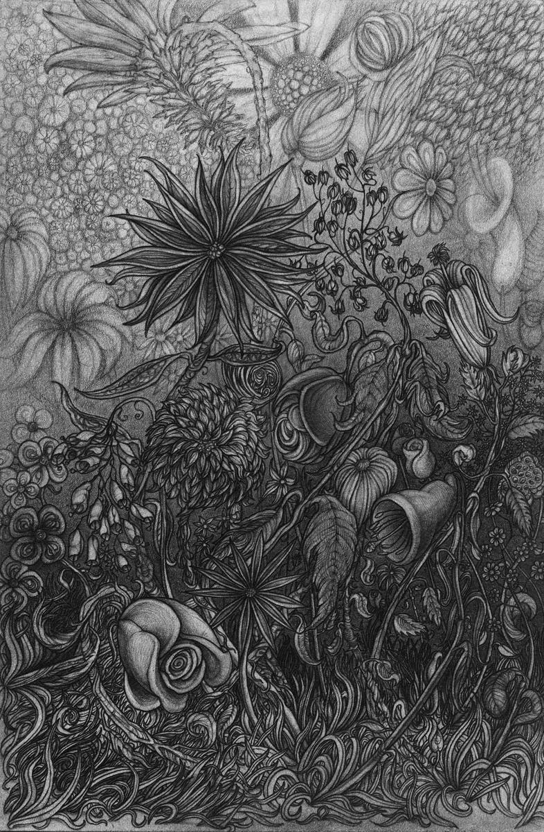 """Flowers, pencil, 9"""" x 6"""" - by Rowan Pope"""