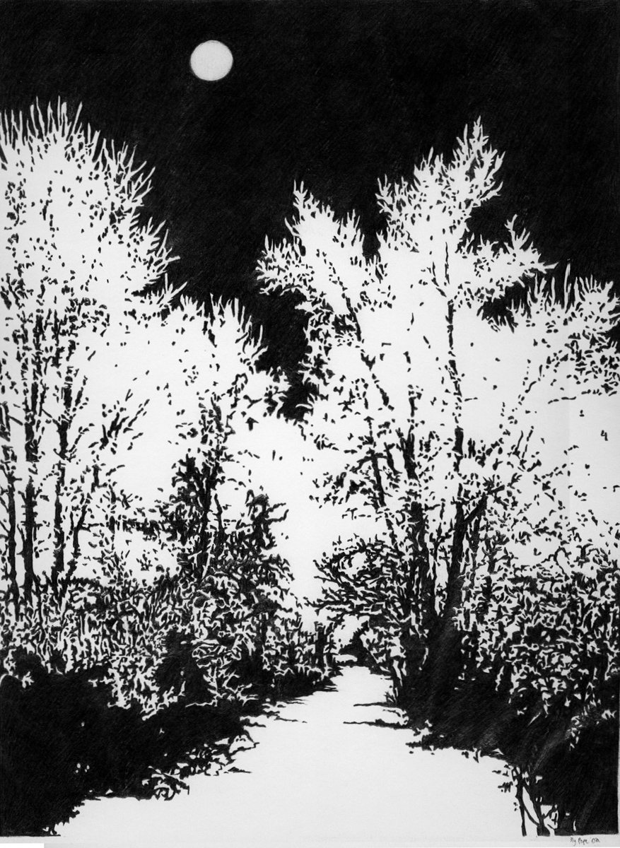 """Snow Trees, pencil, 13"""" x 12"""" - by Bly Pope"""