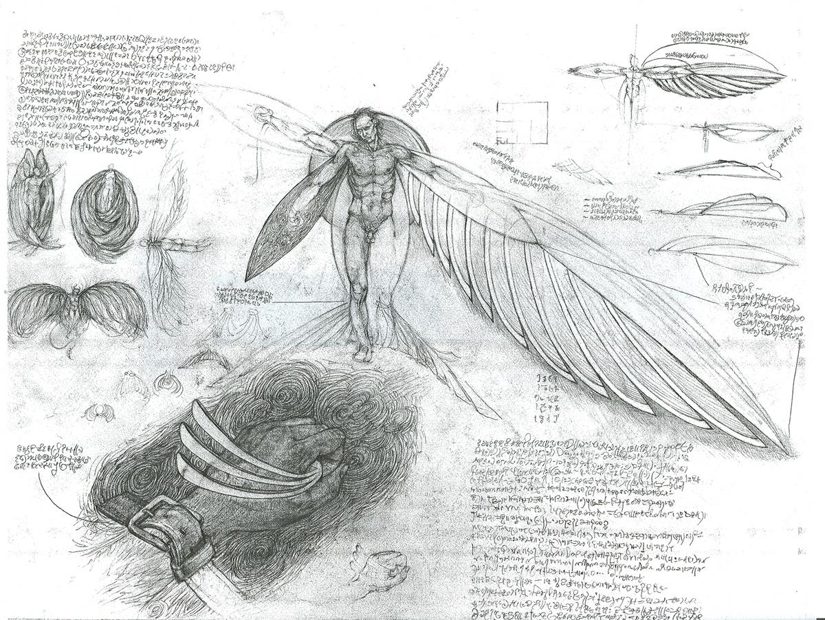 "Wing Design, pencil, 18"" x 24"" - by Rowan Pope"