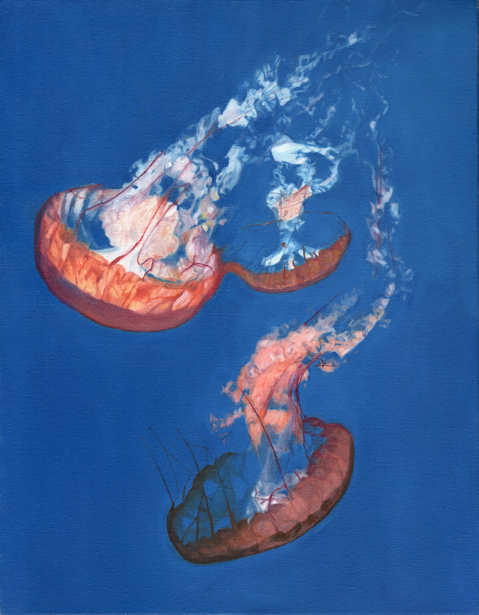 """Jellyfish, oil, 11"""" x 8"""" - by Bly Pope"""