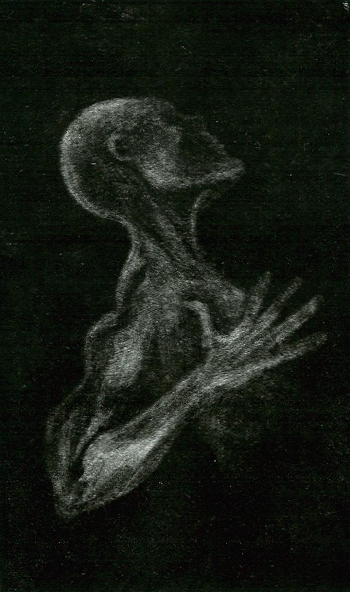 "Figure, mezzotint, 5"" x 3"" - by Bly Pope"