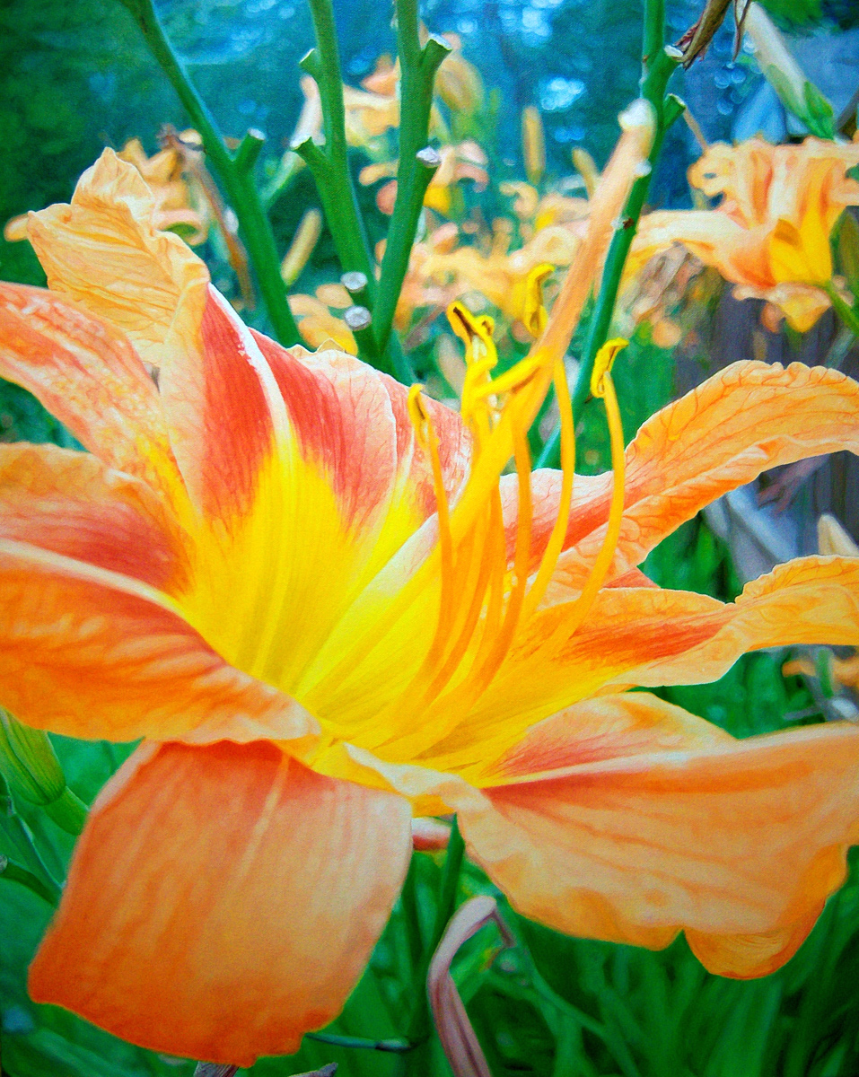 """Orange Day Lily, oil, 30"""" x 24"""" - by Bly Pope"""