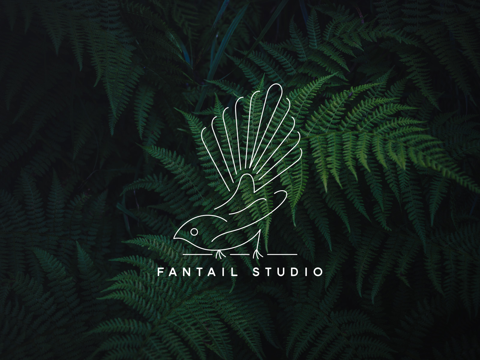 Fantail Studio - The studio of my aunt, Sandra Corbett, a bookbinder, tutor, and tinker artist. This is my take on a fantail, a native New Zealand bird.