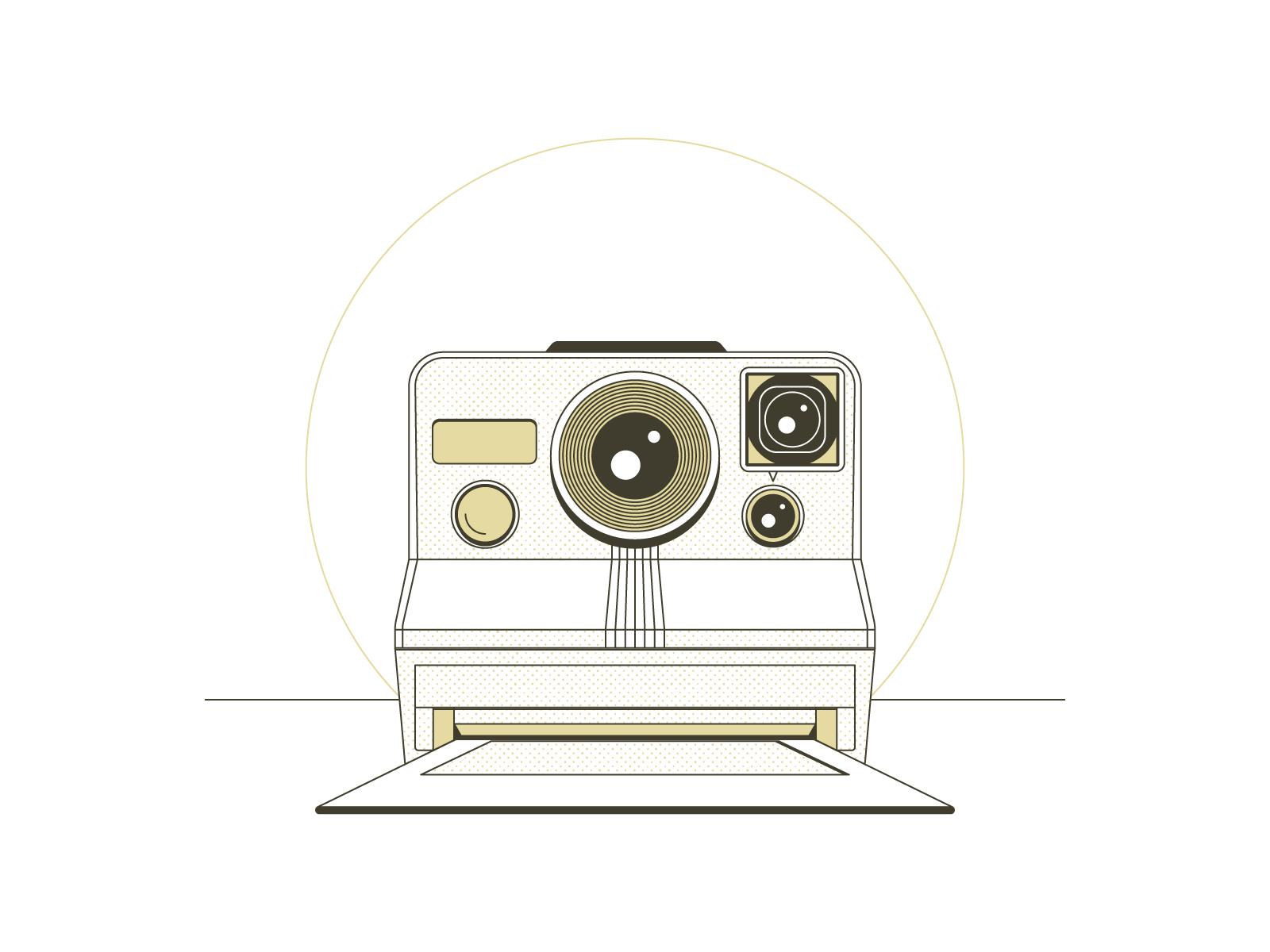 Polaroid_SX70_1.0.jpg