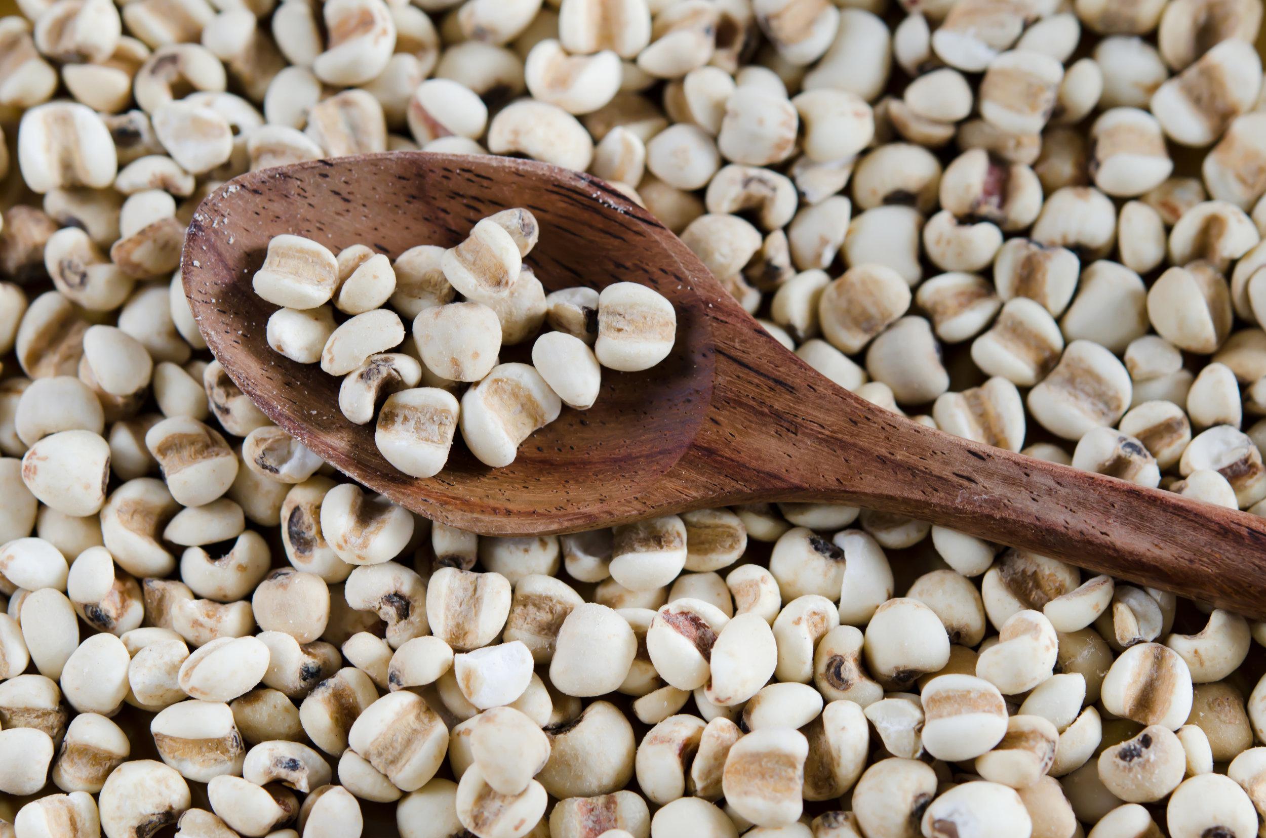 chinese-pearl--barley-on-spoon-000022473937_Full.jpg