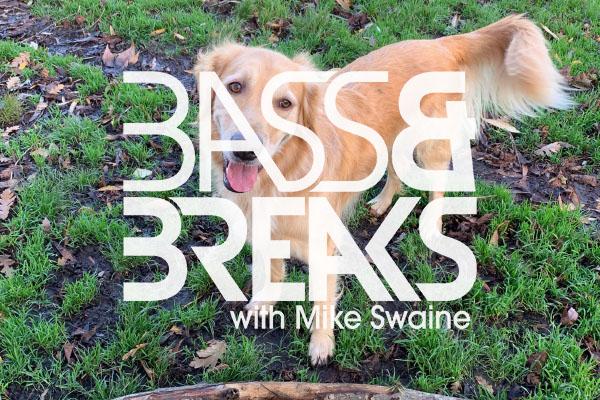 BassAndBreaks-1149.jpg