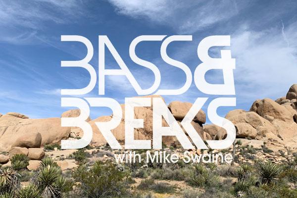BassAndBreaks-1220.jpg
