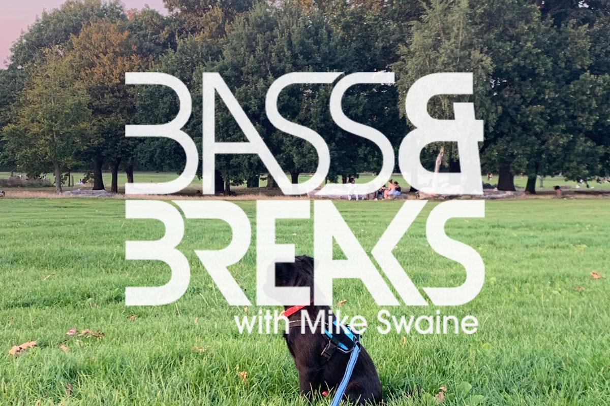 BassAndBreaks-1233.jpg