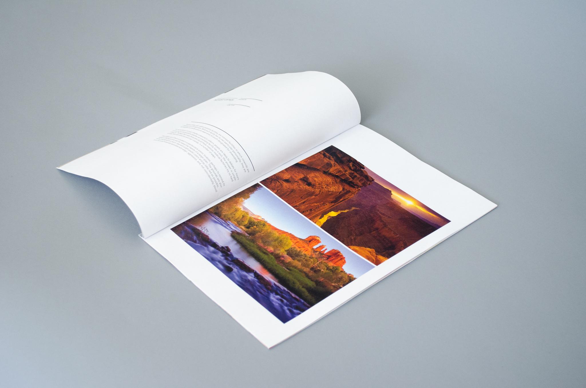 thesis book-4.jpg