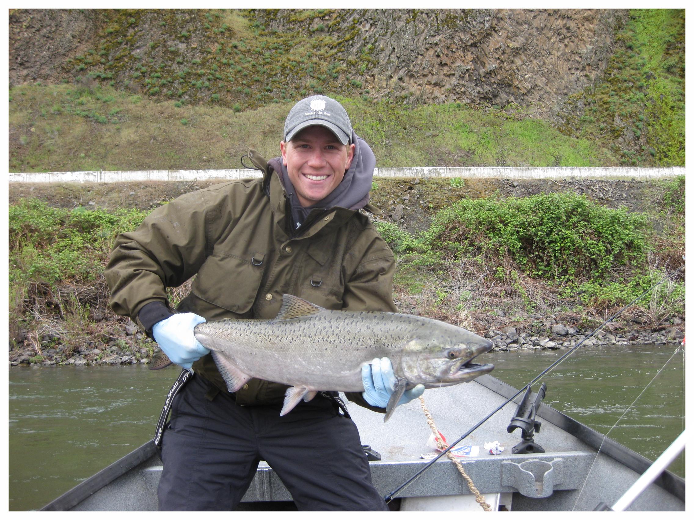 Idaho Salmon