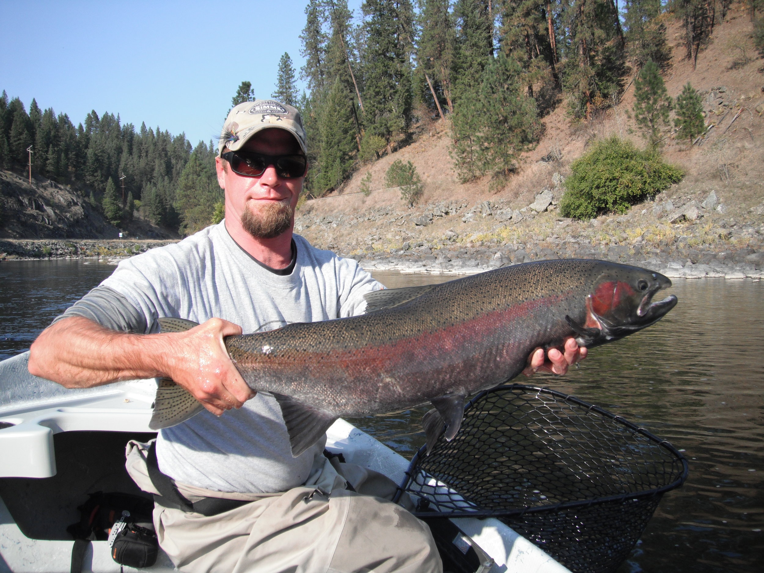 monster b run steelhead orofino idaho backtrolling.JPG