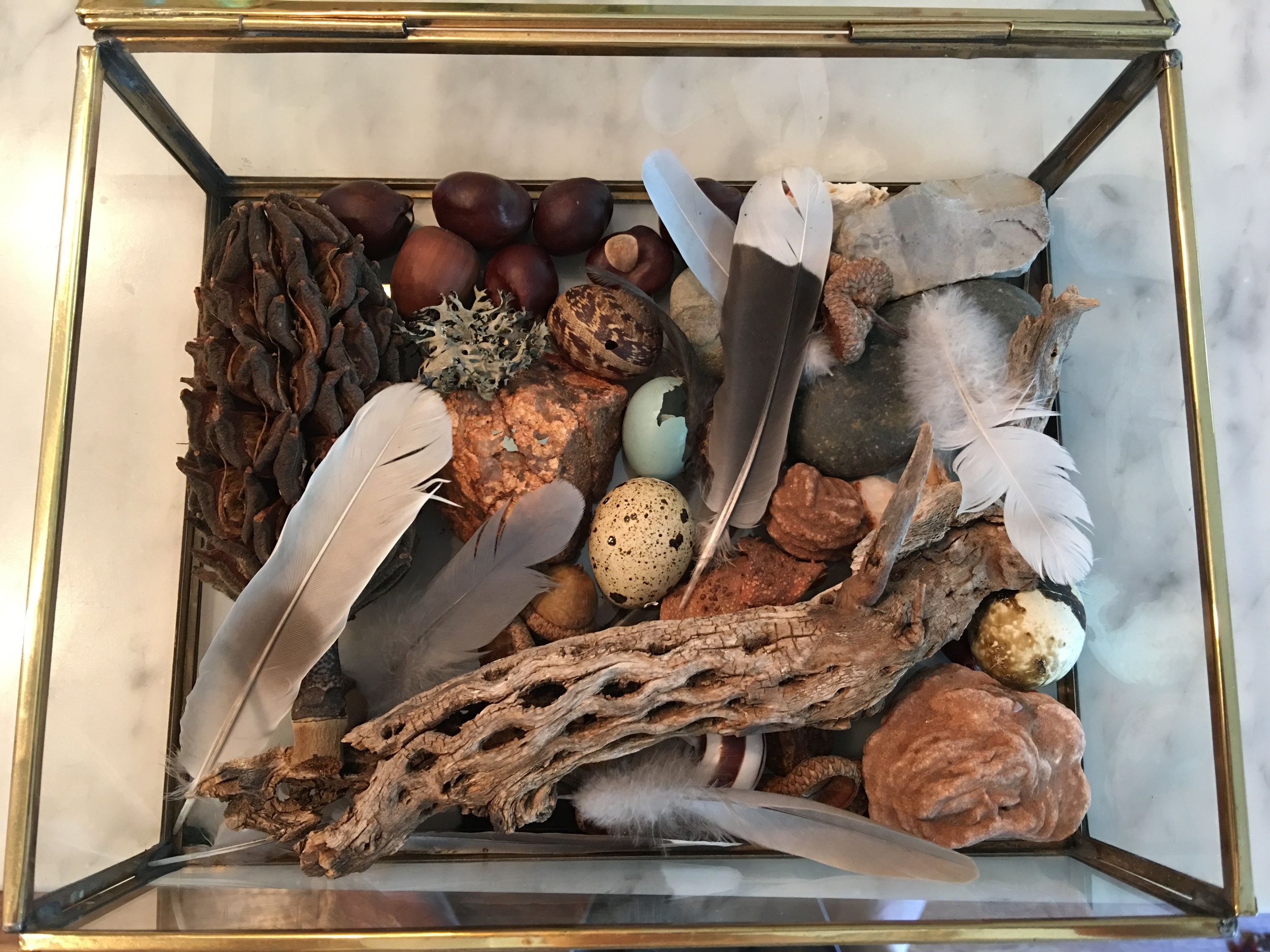 Emmett's collection