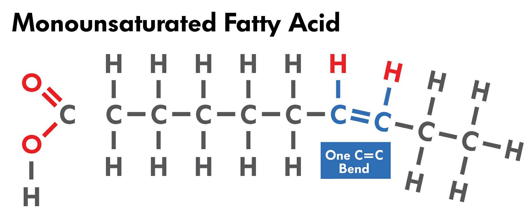 Monounsatured_Fatty_Acid_450.jpg