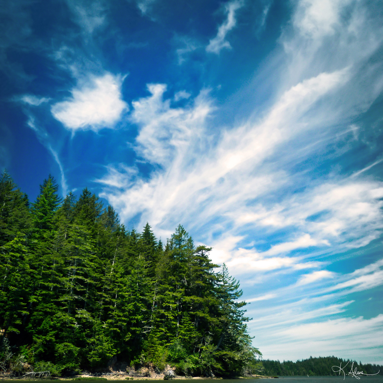 Long Island Sky