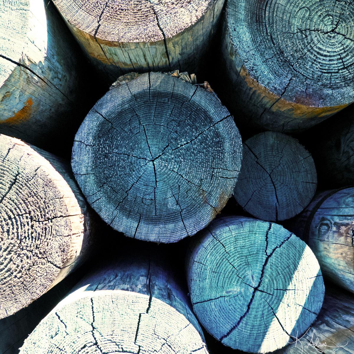 Blue Lumber