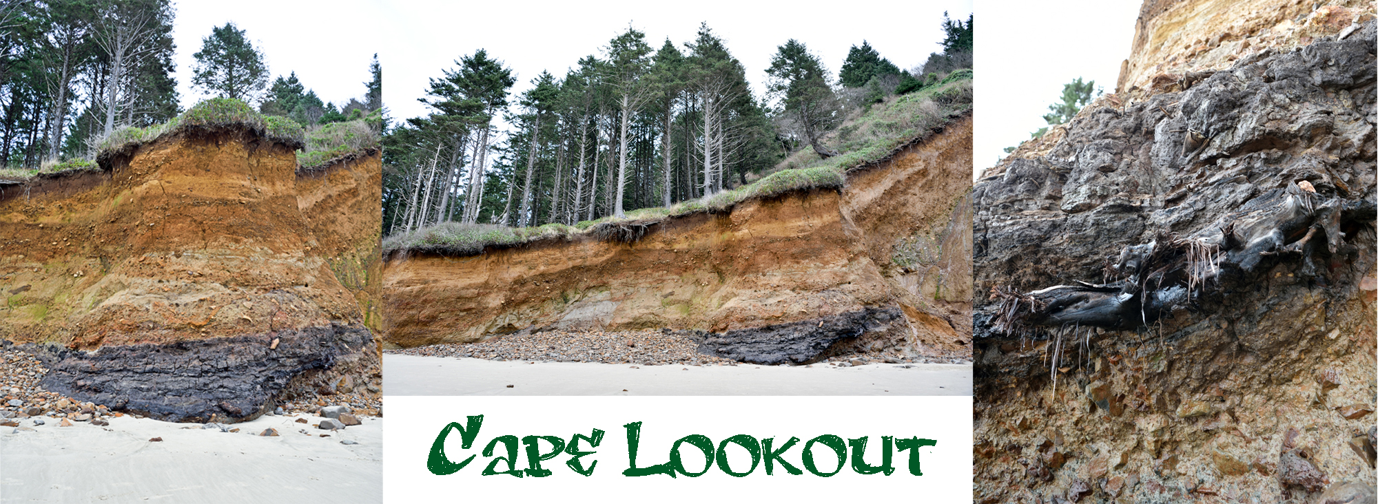 cape-lookout-landslide-oregon-paleosol-beach