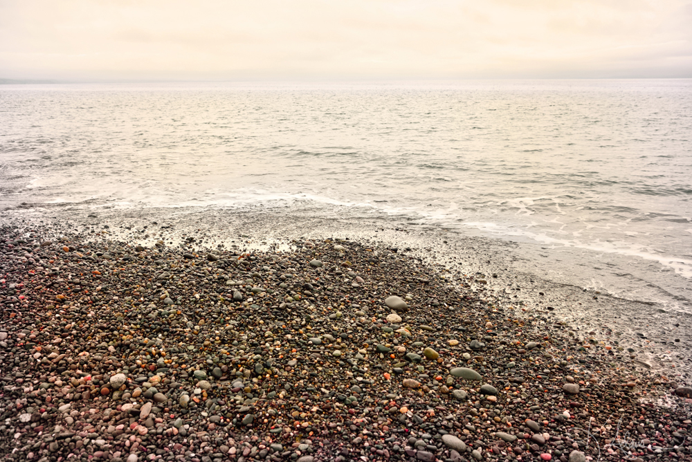 Dungeness Spit Pebble Beach