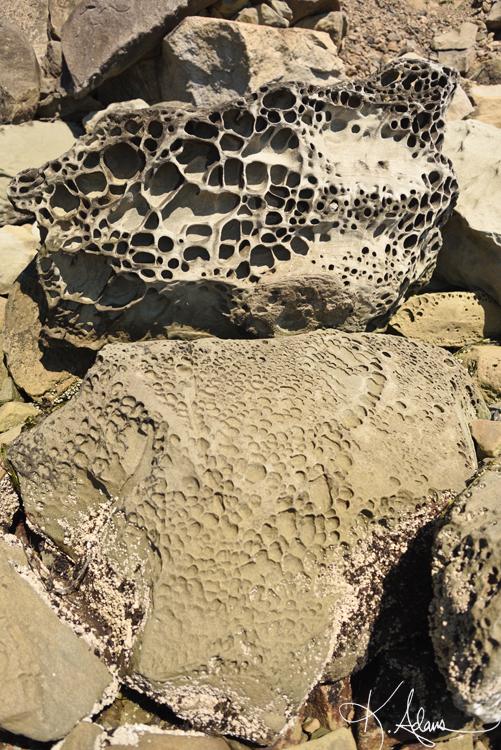 stone lace stack web.jpg