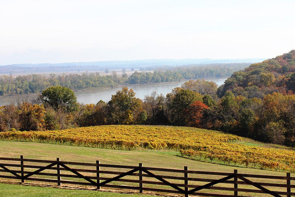 OakGlenn Winery