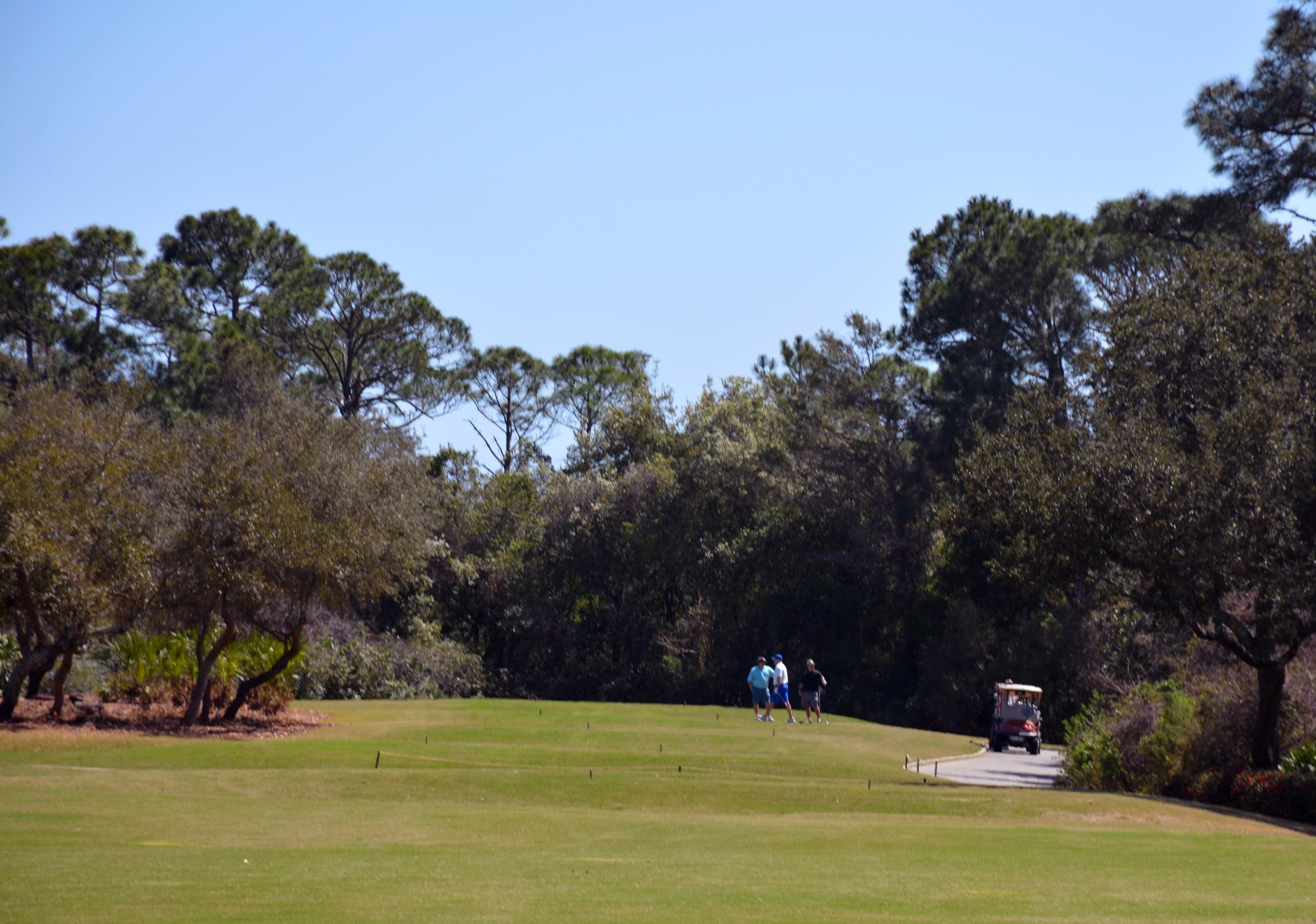 ECCAC Kieran May Golf Tournament 2016-16.jpg