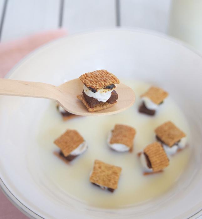Mini-Smores-Cereal.jpg