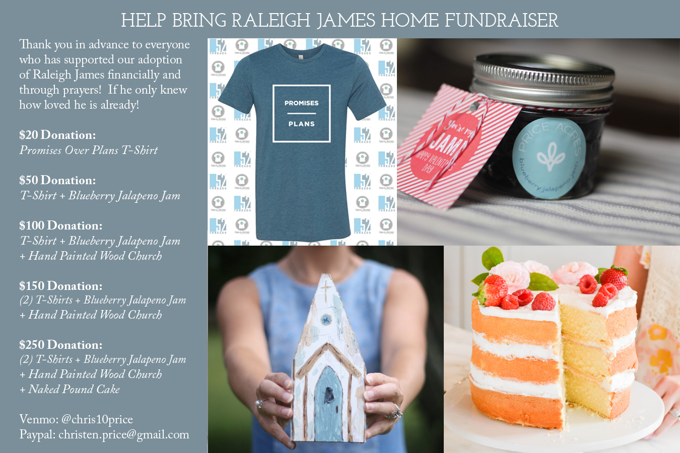 Bring Raleigh James Home Fundraiser Graphic.jpg