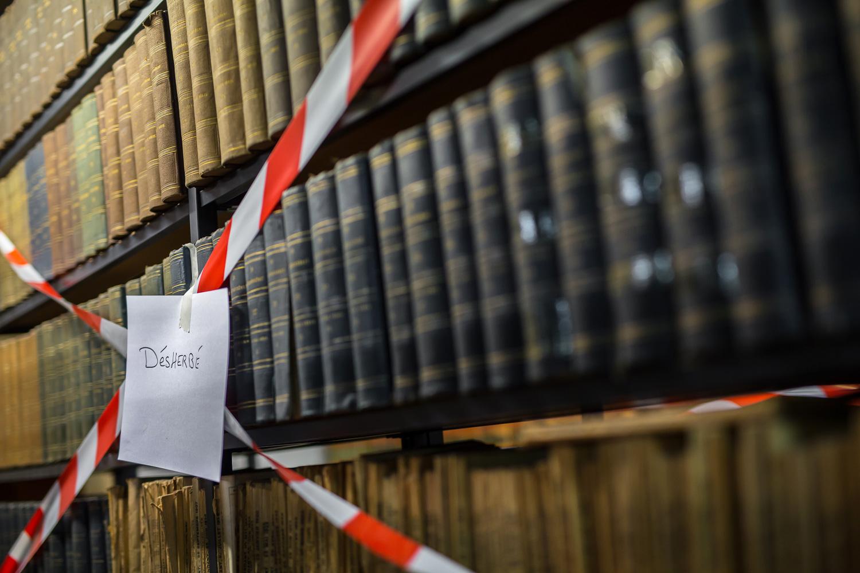 Bibliothèque Humaniste vide - 2 juillet 2015