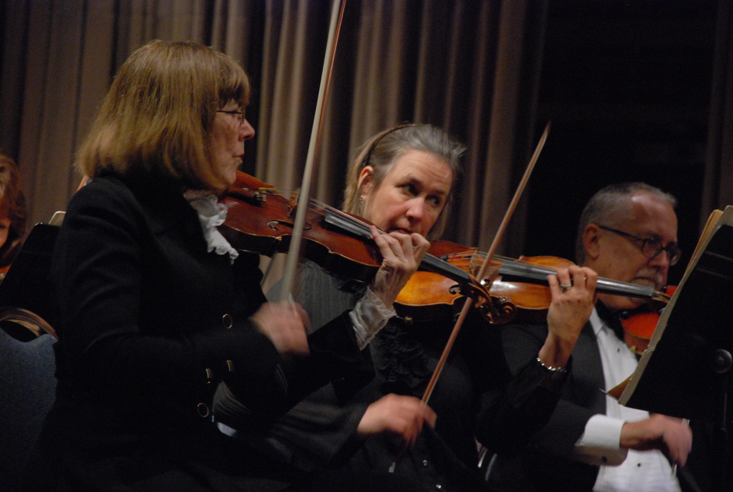 Violins.JPG